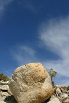 Six birds pass over The Strongman Boulder at Flagpole Peak Boulders.